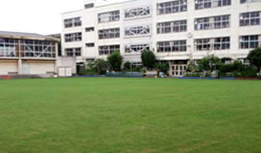 新宿小学校校庭芝生化